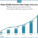 China Mobile Internet Usage in 2014