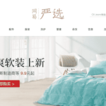 An overview of China's quality retail e-commerce users