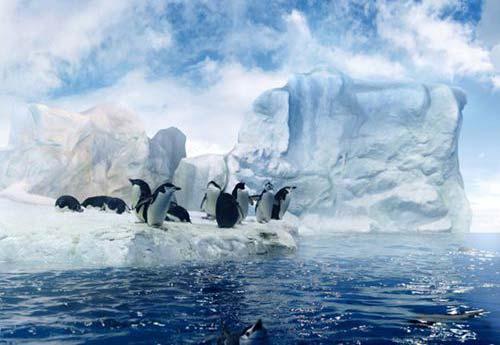 south-pole-travel